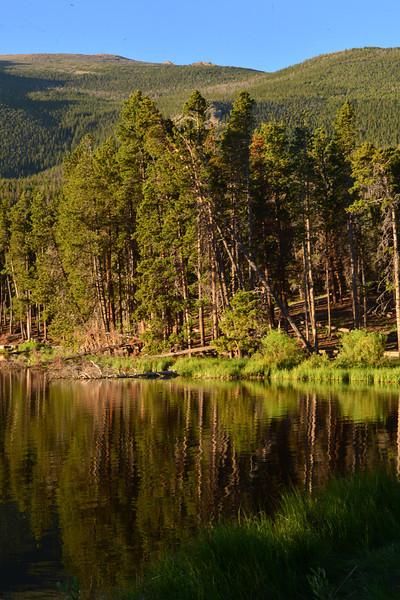Trees reflect on Sprague Lake on Tuesday.