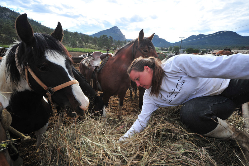 Molly Curtiss, a cowgirl from Maryland, spreads out morning hay at the Sombrero Ranch on Thursday. WHile school has begun in some places, including Estes Park, not all of the tourist attractions are ready to pack it in for the season.