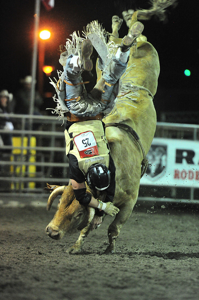 A bullrider looks forward to the protection of his kevlar vest and helmet as a bull flicks him off. The 1,500-pound bovine athletes tested all of the protective equipment, dislodging all riders on Saturday night.