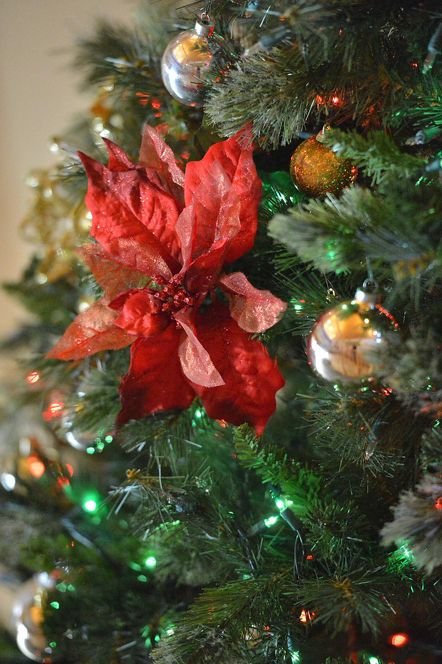 A poinsettea decorates the Good Samarita Christmas tree.