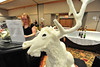 A pastry-shortening bull elk greets visitors to the Estes Park Quota Club's Taste of Estes on Thursday. The elk was created for the event by the Rocky Mountain Inn's chef, Theresa Sherwood and her team.