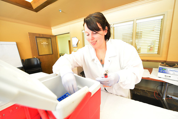 Erin Vinesett places viles of blood into a cooler. The operation involves lots of coolers to keep the blood in good shape for the trip to Fort Collins.