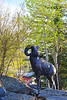 The bronze bighorn welcomes visitors as well as spring to downtown Estes Park on Saturday. Warm temperatures are expected for the first holiday weekend of the summer travel season.