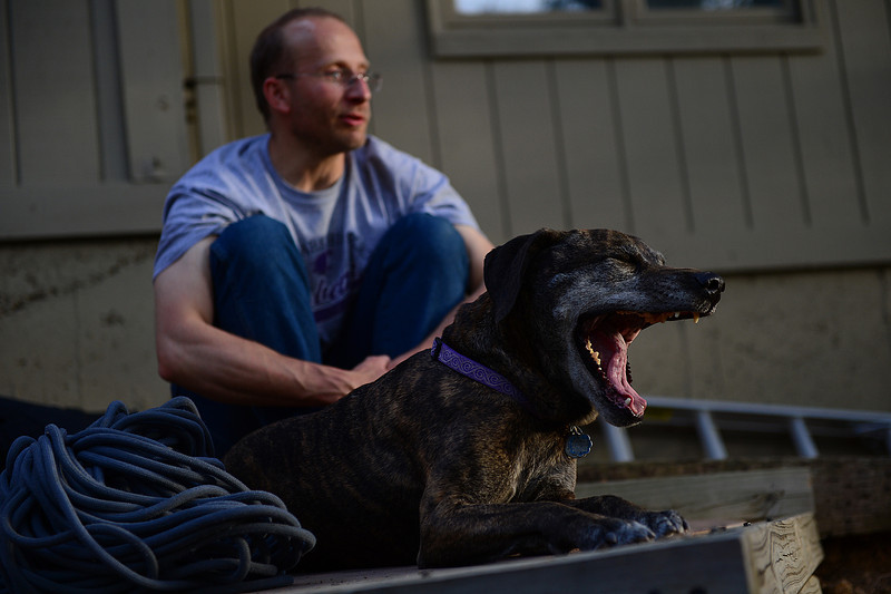 Walt Hester | Trail Gazette<br /> Pax, an Italian mastif, yawns as the evening light fades on her and owner Todd Burke on Tuesday. While feeling lazy, the dog days of summer didn't start for one more night, Wednesday.
