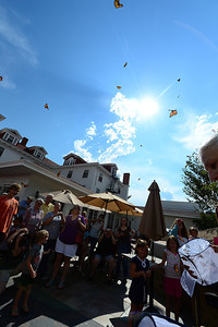 Walt Hester | Trail Gazette Monarch butterflies flutter away from the Stanley Hotel this summer. The hotel released the colorful insects every Thursday afternoon all  summer.