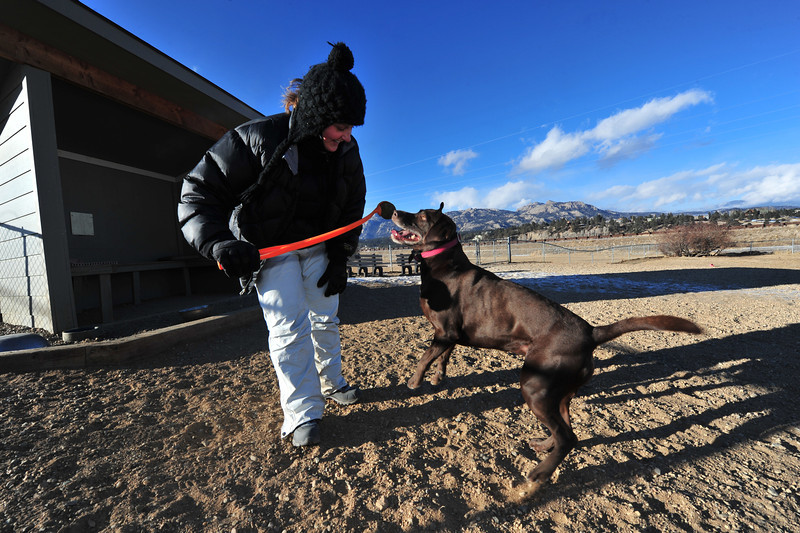 Marley, a German shorthair-Lab mix, and Jessica Block play in the frigid cold at the Estes Valley Dog Park on Monday. The dogs seemed uneffected by highs in single-digits and teens, while their humans bundled up and bounced around to stay warm.