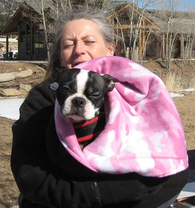 When not pulling in the 20-pound class on Saturday, this pug bundled up and cuddled with its handler.