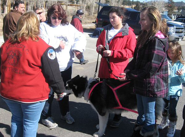Dog pull participant (in the pink harness), handlers and admirers discuss the weekend's efforts.