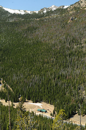 Walt Hester | Trail Gazette<br /> Dead trees and bare ground punctiate the early season drive up Trail Ridge Road on Monday. The state currently sits below 70 percent of average snowpack.