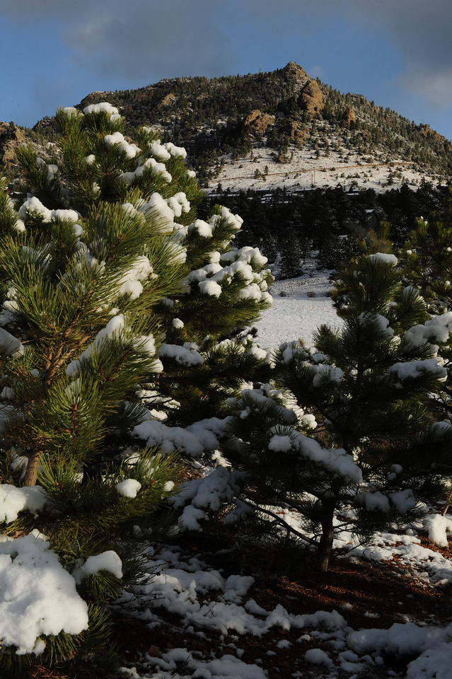 Walt Hester | Trail Gazette<br /> An inch of new snow blankets Estes Park on Sunday morning. While the weekend was unsettled, warmer weather quickly returned by mid-week.