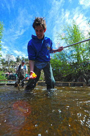 Walt Hester | Trail Gazette<br /> Italian foreign exchange student Francesco Lo Russo scoups up duck number three at the finish of the annual Estes Park Duck Race on Saturday. The Rotary Club sponsors the foreign exchange studenst as well as the Duck Race.
