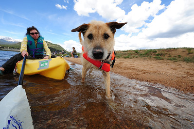 Walt Hester | Trail Gazette Stacy Elro of Estes Park tries to coax her dog, Cooper, into a kayak on Lake Estes on Saturday. While fishing was the main event, there were plenty of other options for fun on the lake.