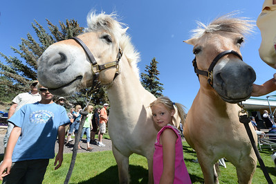 Walt Hester   Trail Gazette Ella Gosnell, 5, stands between a pair of Norwegian Fjord Horses in Bond Park on Saturday. The horses and visitors to Bond Park came for the annual Scandinavian Midsummer Festval.
