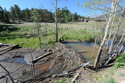 Walt Hester | Trail Gazette Stagnant water pools behind a beaver dam, while only a trickle goes down stream in Fish Creek on Thursday. Lack of rain and snow have curtailed stream flow.