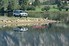 A fisherman checks his tackle box while fishing the calm water of Lake Estes Monday morning.