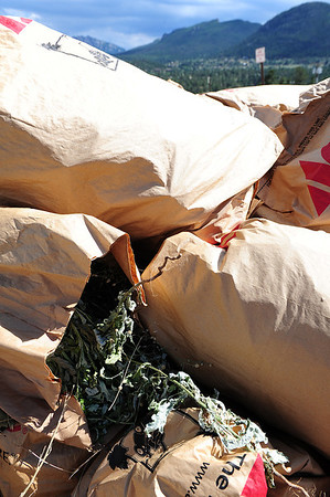 Walt Hester | Trail-Gazette<br /> Weeds pile up along Elm Road on Saturday. This weekend, Estes Park was invited to drop off their noxious weeds at the county yard.