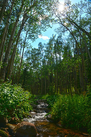 Walt Hester   Trail-Gazette<br /> A small stream trickles out of Hidden Valley on Wednesday. While July was the hottest month on record in the US, Colorado is forcast to see a break in the weather with the coming, possibly wetter-than-normal autumn.