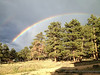 A rainbow arches across the Estes Park sky following a passing thundershower.