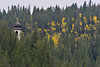 Walt Hester | Trail-Gazette<br /> Aspens and an onion dome poke out from among evergreens on Monday. Aspens along the Peak to Peak Highway, like these above Peaceful Valley, are beginning to change and brighten the scenery.
