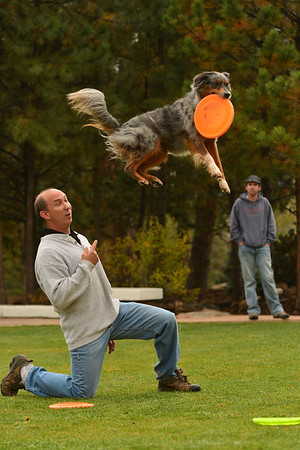 Walt Hester | Trail-Gazette<br /> Jim Matello and his Australian sheapherd, Sidney, play an impressive game of catch on the front lawn of the Stanley Hotel on Wednesday. Matello and his dogs are moving to Estes Park this fall.