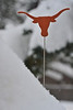 A University of Texas antenna topper looks a bit out of place amid the deep snow in Estes Park on Wednesday. The storm dumped nearly two feet of snow on the area by Wednesday morning.