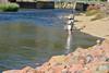 07ep olympus fishermen.jpg Fishermen ply the waters of the Big Thompson River below Olympus Dam Wednesday afternoon.