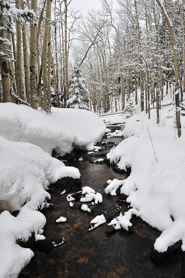 A stream burbles and gurgles down from Hidden Valley on Tuesday. While more snow fell on the Estes Park area over night, the snow pack will need a great deal more to get close to normal.