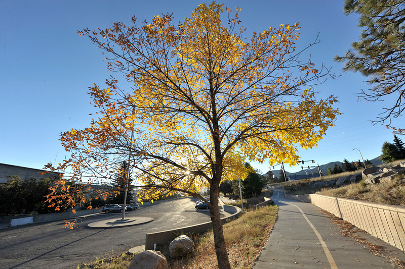Photo by Walt Hester<br /> A tree with fall color brightens the trail near the electrical plant on Wednesday. Trees are just begining to take on fall color in town.