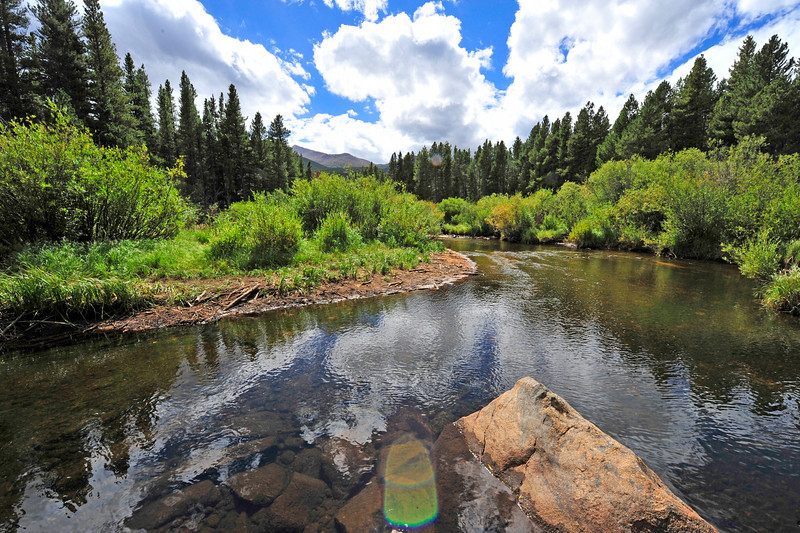 Photo by Walt Hester<br /> Glacier Creek twists through willows and evergreens along Bear Lake Road on Wednesday.