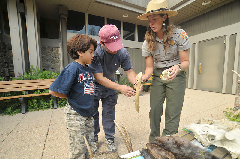 Photo by Walt Hester<br /> Ranger Mandy Cluck shows Alano, left, and Oscar Aguirre a branch, pelts, skulls and antlers during her Skins and Skulls program at the Kawuneeche Visitors Center on the park's west side.
