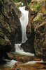 Photo by Walt Hester<br /> The Fall River cuts through Chasm Falls along the Old Fall River Road on Thursday.