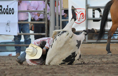 Chance Honey of La Junta, Colo. brings down his steer during Wednesday's session of the Rooftop Rodeo at Stanley Fair Grounds. Photo by Walt Hester.