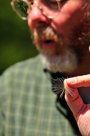 Photo by Walt Hester<br /> Naturalist Kevin Cook explains windborne seed dispersal, and the flowers that have this characteristic, to a Rocky Mountain Nature Association seminar on Saturday.
