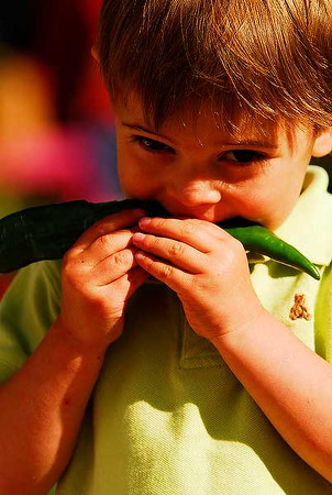 Photo by Walt Hester<br /> Rojan Usubillaga, 2, of Estes Park enjoys a mild chili at the Estes Valley Farmers' Market on Thursday. The market continues from 8 a.m. to 12:30 p.m. every Thursday through September.