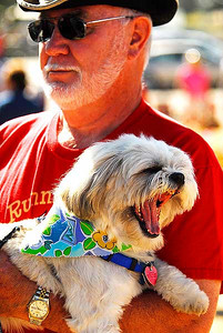 Photo by Walt Hester Molly, a Lhasa Opso, yawns while traveling around the Estes Valley Farmers' Market with owner Paul Harball of Estes Park on Thursday.