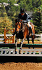 Photo by Walt Hester<br /> Randy Henry guides Brego, owned by Lisa Martinez-Bate, over a low jump at the Stanley Fairgrounds on Wednesday. The Hunter-Jumper horse shows began Wednesday and run through August 8.