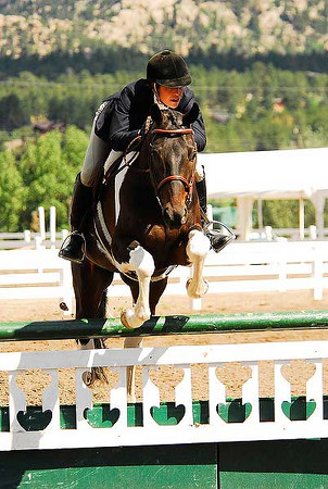 "Photo by Walt Hester<br /> Karen Banister guides First Class Ticket, owned by Kay Chester, over a jump during Hunter competition on Wednesday. Both show hunter and jumper competitions are considered ""English"" riding disciplines."