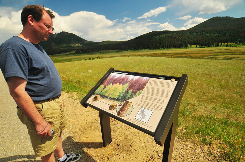 Photo by Walt Hester<br /> Jeff Castillo of St. Louis, Mo. reads a new sign at the Sheep Lakes explaining the red and grey beetle-killed trees in Horseshoe Park on Thursday. The interperative sign tells the process of the trees' deaths with the infestation of blue fungus, bark beetles and the stress of gradually warmer and dryer weather.