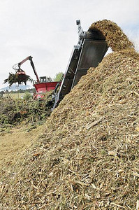 Big machines made short work of the town's collected slash pile at the Stanley Fairgrounds on Wednesday. The tub grinder did, in 90 minutes, what would normally take several hours. Photo by Walt Hester