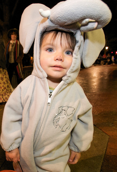 Photo by Walt Hester<br /> Finley Helmuth, 2, is the night's cutest elephant along Elkhorn on Halloween.