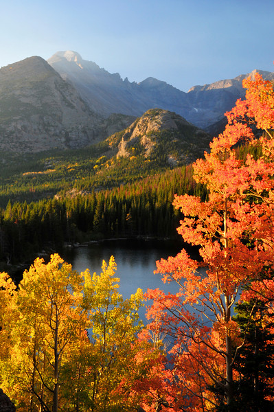 Photo by Walt Hester<br /> Orange joins the usual display of gold among the aspens in Rocky Mountain National Park on Tuesday. Wet spring and early summer, combined with the dry September has brought out radiant color in the Rockies most celebrated trees.