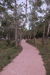 Photo by Walt Hester The Fall River Trail meanders through aspens along the road of the same namr west of town.