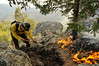 Photo by Walt Hester<br /> Sean McCaffrey of the Roosevelt National Forest fire crew digs a line around the West Creek Fire west of Glen Haven on Tuesday. The fire, which burned about an acre of steep, rocky terrain, was sparked by a lightning strike on Monday.