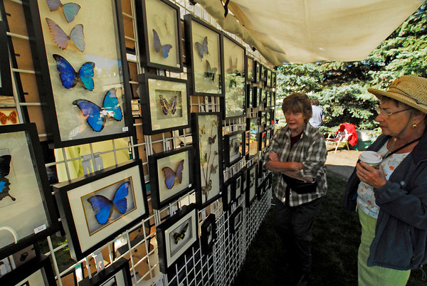 Photo by Walt Hester<br /> Carol Andrews, left and Laurel Shaw, both of Pinewood Springs admire art made from real butterflies at the art show on Saturday. Sky Vine Butterflies artist Peggy Jackson receives dehydrated insects from around the world to creat her unusual art.