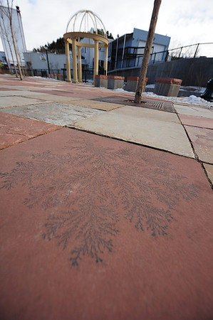 Walt Hester | Trail Gazette<br /> What seems to be a fossilised plant decorates flagstone along the Fall River on Monday. Several of the flagstone blocks have the dark markings.