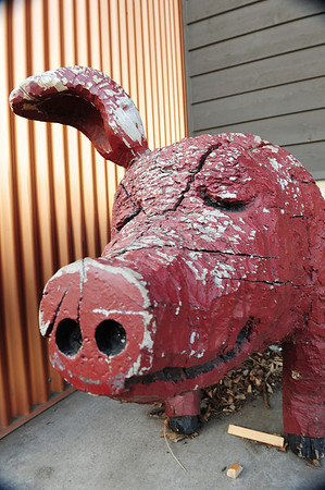 Walt Hester | Trail Gazette<br /> A weathered one-eared pig greets patrons in Estes Park. While unusual, Ed's Cantina's long-time greeter is not the only sculpture, or even pig, to meet visitors around town.