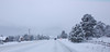 Hwy. 7 in Estes Park was snowpacked and slick in spots Friday morning falling a Feb. 3 storm that dropped close to 10 inches of snow on the area by mid-morning. More snow was expected to fall through Saturday.