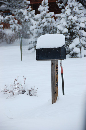 A roadside mail box wears a cap of fresh snow Friday morning. A Feb. 3 storm had dumped close to 10 inches of snow on parts of the Estes Valley with more expected to fall throughout the day and into Saturday before giving way to sunny skies on Sunday.