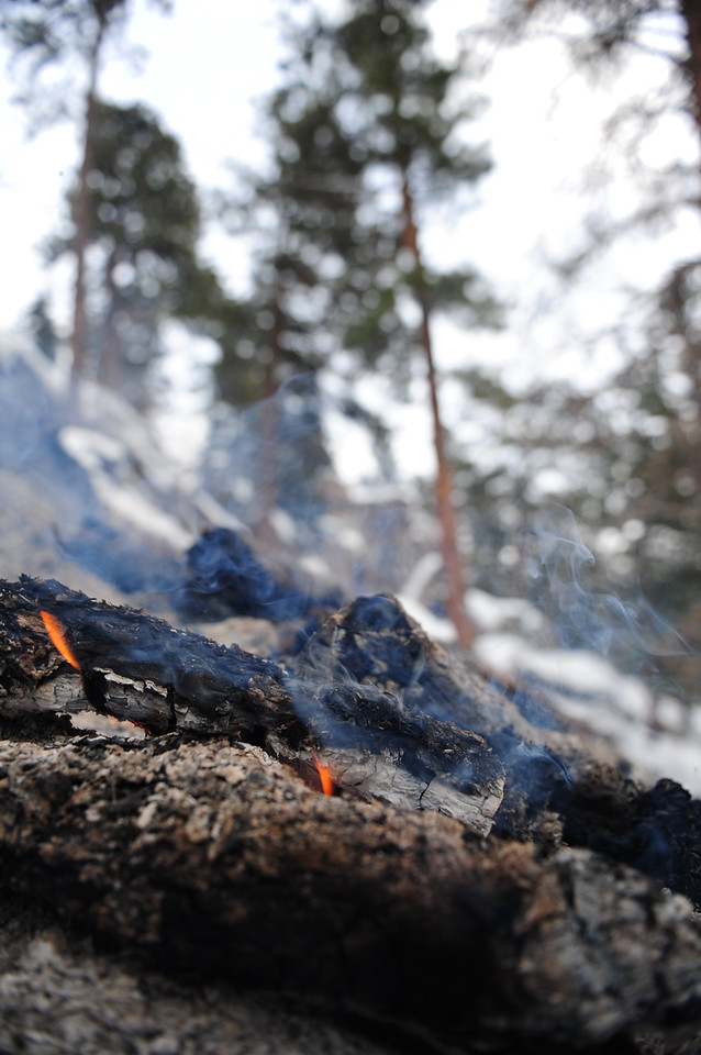 Walt Hester | Trail Gazette<br /> Logs smolder on a mountainside above HWY 7 on Monday. Both the Forest Service and the National Park Service each performed controled burns of slash piles in the cold and new snow.