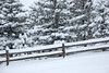 Some areas of the Estes Valley were reporting around nine and a half inches of snow Friday morning, Feb, 3.